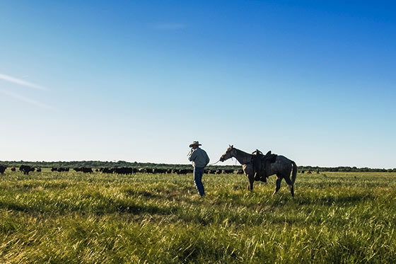 Texas landowner and his horse on his property.